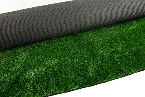 (SHANGHAI EASUN TURF CO., LTD 6' x 12' Economy Indoor or Outdoor Artificial Grass Rug | Lead & Toxic Free | Fake Lawn for Dogs, Kids Play Areas, Patio, Porches, Doormat, So Much More)