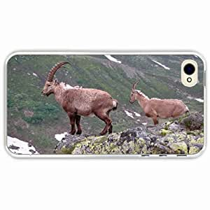 iPhone 4 4S Black Hardshell Case mountain cliff rocks antlers mountain goats Transparent Desin Images Protector Back Cover Kimberly Kurzendoerfer