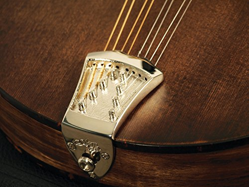 Morgan Monroe AB-TP/CH Ashton Bailey Mandolin Tailpiece, Chrome