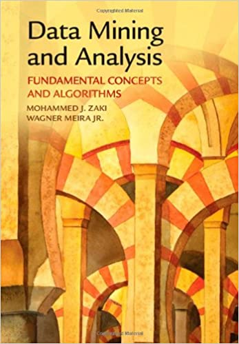 Fundamental Concepts and Algorithms