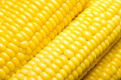 Sugar Buns Hybrid Corn Seeds