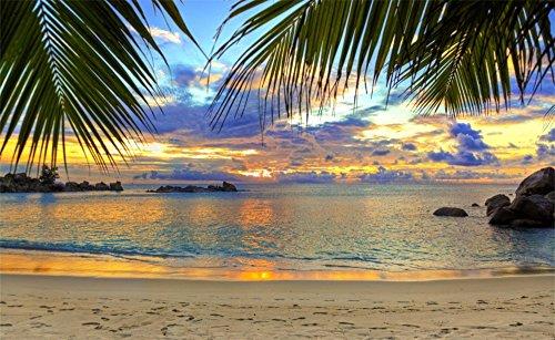 Lucky Horseshoe Wish Stone - Leowefowa Vinyl 5X3FT Seaside Sand Beach Backdrop Coconut Palm Rock Stones Sunset Blue Sky Romantic Nature Summer Scene Photography Background Kids Baby Photo Studio Props