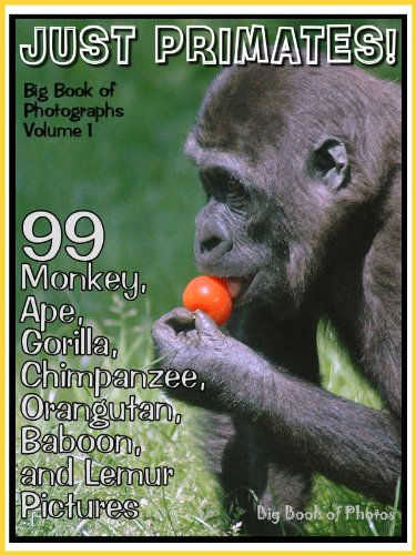 99 Pictures Just Primate Photos Big Book Of Monkey Ape Gorilla Chimpanzee Orangutan Baboon And Lemur Photographs Vol