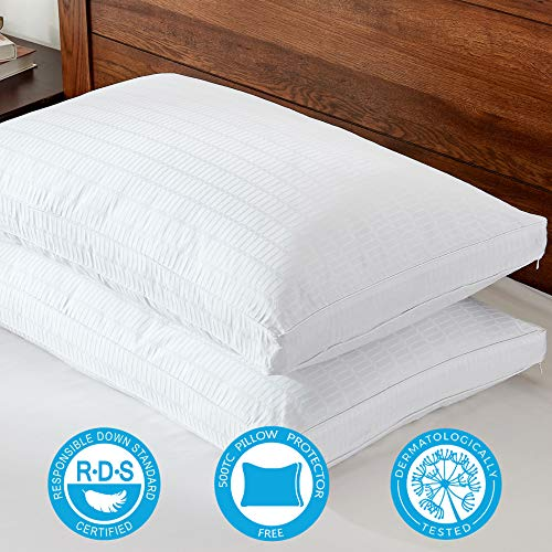 Basic Beyond Goose Down Feather Pillows - Include 2 Pack 500TC Cotton Pillow Protectors/Cases with YKK Zipper and 2 Pack Queen Size Luxury Hotel Gusseted Bed Pillows for Sleeping