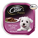 Cesar Canine Cuisine Puppy Wet Dog Food With Chicken And Beef, (Pack Of 24) 3.5 Oz Trays Review
