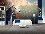 wall26 - Beautiful Arabian Horse with Whitehead on Wonderful Nature Background - Removable Wall Mural | Self-adhesive Large Wallpaper - 66x96 inches