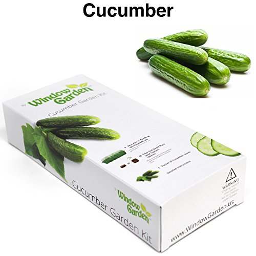 Garden Starter Kit Cucumber Grow a Garden by Seed Germinate Seeds on Your Windowsill then Move to a Patio Planter or Vegetable Patch Mini Greenhouse System Makes it Foolproof Easy and Fun
