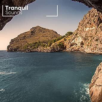 Tranquil Sounds for Relaxation de Relaxar Meditação Clube