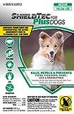 Dog Flea Treatment Collar - ShieldTec (4-pack) (MEDIUM DOG 16-33 lbs)