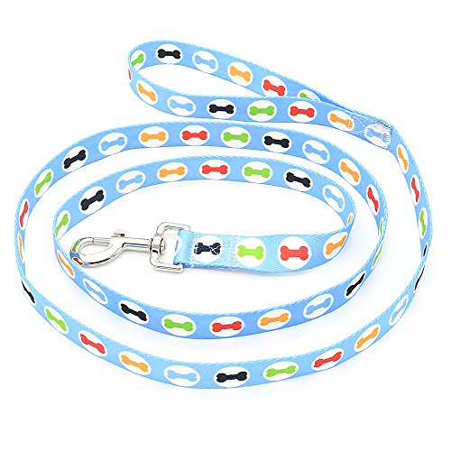 Cute Well Made Leash