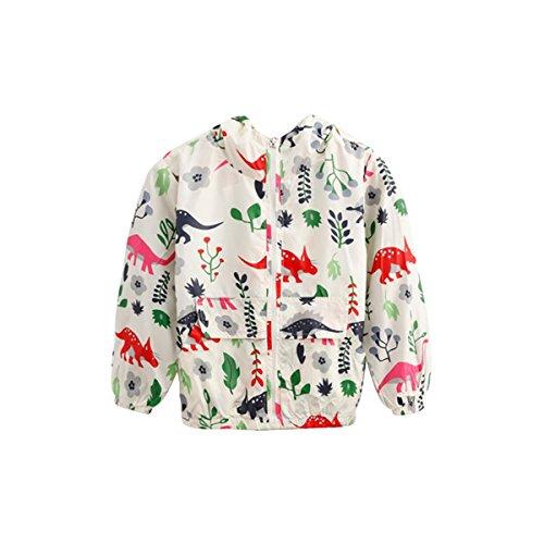 Summer Fairy Mask (Fairylinks Unisex Baby Kids Print Hoodie Jacket Wind Proof Coat Outwear 1T-5T Cat Bird Dinosaur)