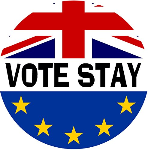 Vote Stay (TWO PACK) Car Bumper / Laptop / Window / Decal/Sticker ...