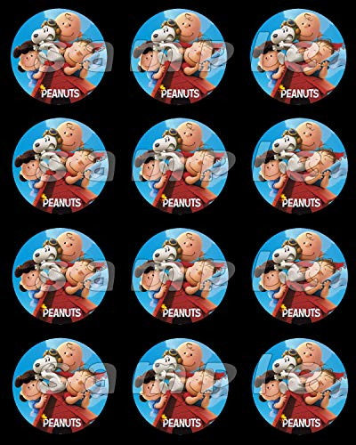 Peanuts Charlie Brown Snoopy Sheet of 12 stickers,