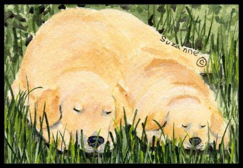 18 x 27 Multicolor Carolines Treasures SS8838MAT Golden Retriever Indoor Outdoor Doormat