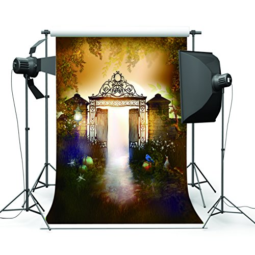 5x7FT Masquerade Mysterious Door Photography Backdrop Customized Photo Background Studio Prop WSJ-008 -