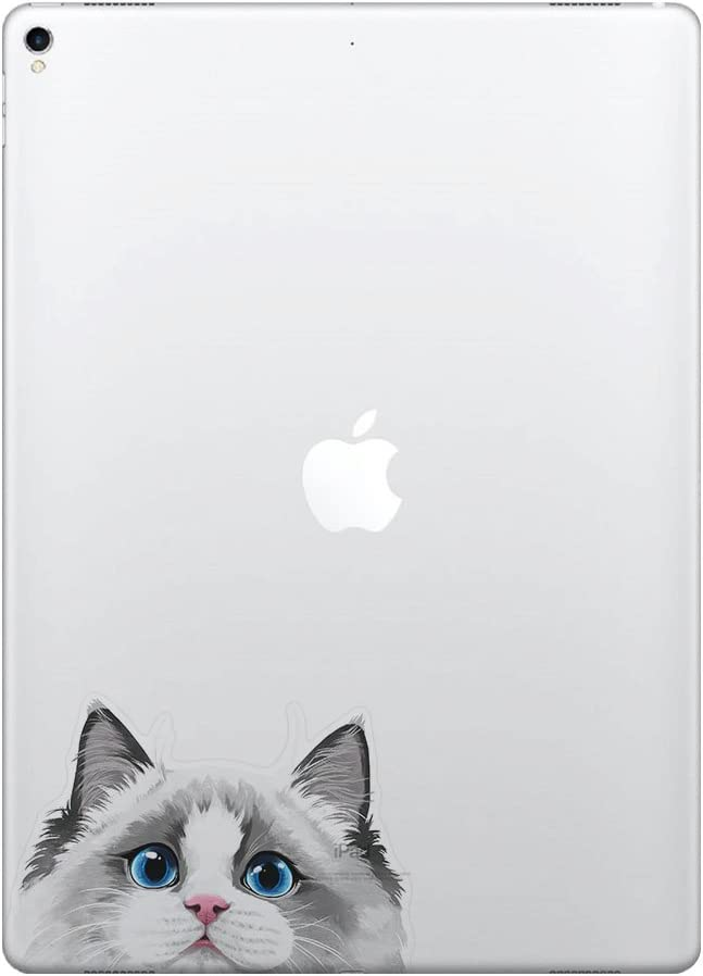 FINCIBO 5 x 5 inch White Silver Point Ragdoll Cat Removable Vinyl Decal Stickers for iPad MacBook Laptop (Or Any Flat Surface)