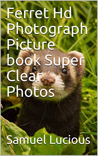 (Ferret Hd Photograph Picture book Super Clear Photos)