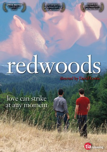 Redwoods by