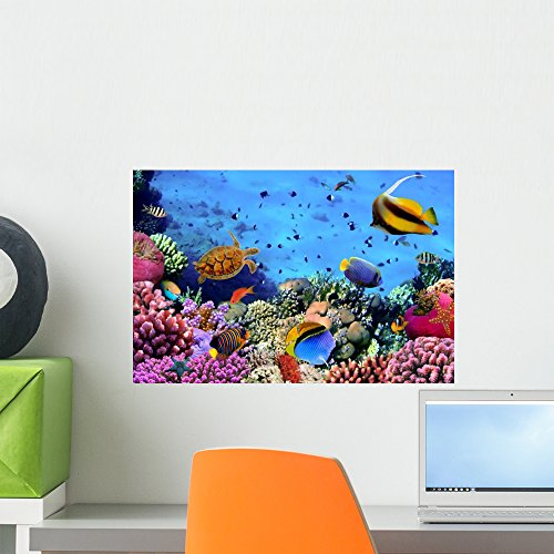 Coral Reef Murals - Wallmonkeys Photo Coral Colony Reef Wall Mural Peel and Stick Graphic (18 in W x 12 in H) WM10918