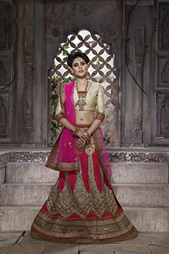 IWS Net Fabric Beige Pretty Lehenga Style With Embroidery Work Dupatta 79587
