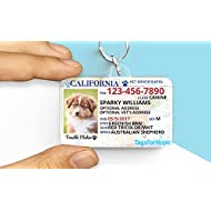 Pet ID Tags for Hope Large and Small