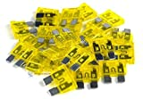 Tools & Hardware : 25 pack 20 Amp ATC Fuse Blade Style Scosche 20A Automotive Car Truck