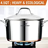 HOMI CHEF Mirror Polished Copper Band NICKEL FREE Stainless Steel 4.5 Quart Stock Pot with Glass Lid (No Toxic Non Stick Coating, 9.5 Inch)