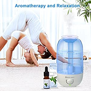 Ultrasonic Cool Mist AROMA Humidifier / Essential Oil Diffuser Set - Aromatherapy Oil. Best Humidifiers for Bedroom, Living Room, Office and House | Quiet Operation, Safe for Baby - 2,4 L - GENIANI
