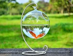 Hanging glass fish tank transparent spherical for Fish bowl amazon