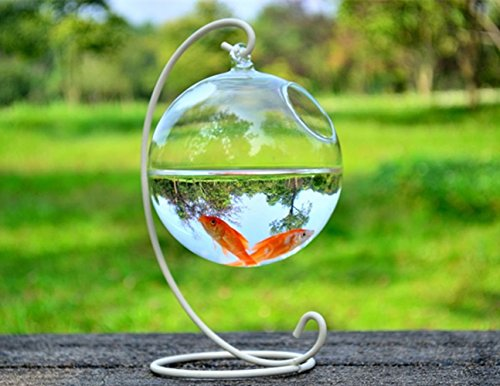 Hanging Glass Fish Tank Transparent Spherical Fish bowl Creative Fishbowl Vases( Include The Stand+Glass Bowl ) (white, small) (Stand Creative)