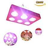 Cheap 1200W LED Plant Grow Light Full Spectrum for Greenhouse and Indoor Plants Veg and Flower (1200W)