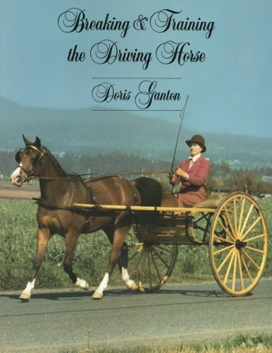 Breaking and Training the Driving Horse: A Detailed and Comprehensive Study