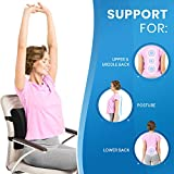 Everlasting Comfort Lumbar Support for Office Chair