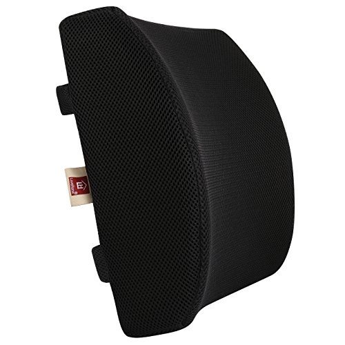 Love Home Memory Foam 3D Ventilative Mesh Lumbar Support Cushion Size: 13.4''12.6''4'' (Black) by Love Home