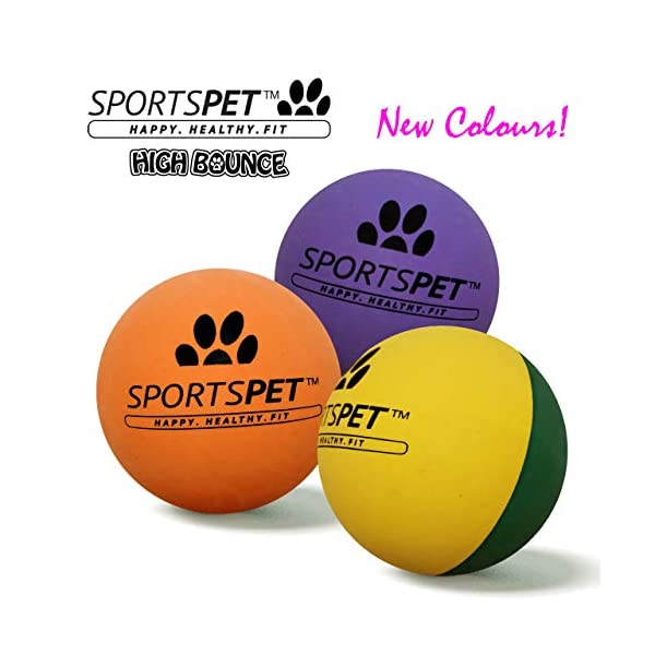 SPORTSPET High Bounce Rubber Dog Balls 3 pack 1