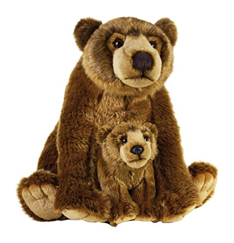 Mother Grizzly Bear - National Geographic Grizzly Bear Mother (15
