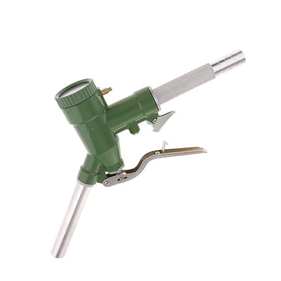 B Blesiya LLY-25 Manual Dispensador de Gasolina con Manómetro Digital: Amazon.es: Bricolaje y herramientas