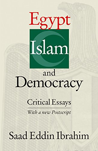 Egypt, Islam, and Democracy: Critical Essays