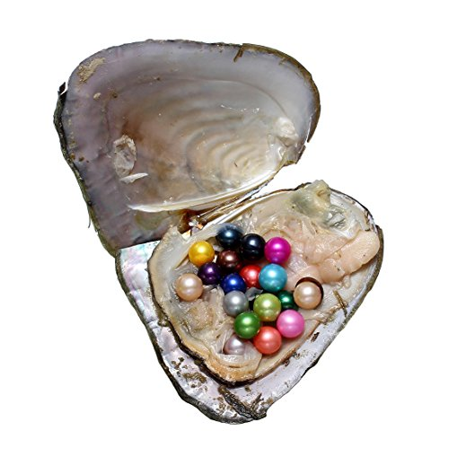50PC Oysters with Pearls Inside, Freshwater Cultured Love Wish Pearl Oyster with Mixed Colors (7-8mm) by COOCLE (Image #2)