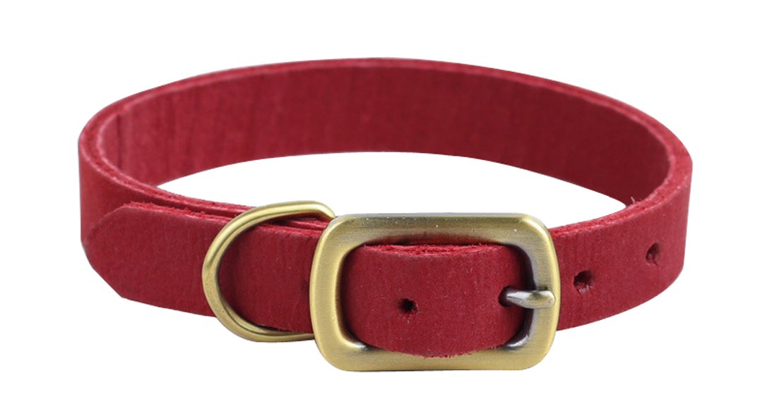 ZEEY Collar de cuero para perros, de tamaño ajustable de 24 a 30 cm y 1,5 cm de ancho, fácil de usar Collar para perros pequeños o gato con Strong Dog Leash ...