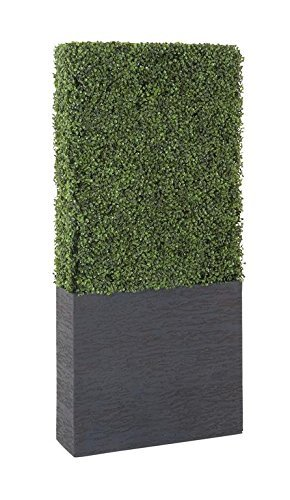 Deco 79 50861 Pe Boxwood Hedge, 22'' by 59'' by Deco 79