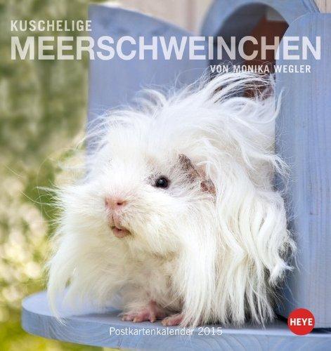 Kuschelige Meerschweinchen Postkartenkalender 2015