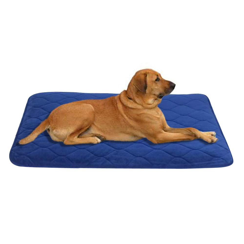 Navy bluee Small& xFF08;19\ Navy bluee Small& xFF08;19\ B&G Dog Bed Washable Anti-Slip Matress Resistance & Durable Soft Velvet Dog Mat (19 inch by 27.5 inch Navy bluee)