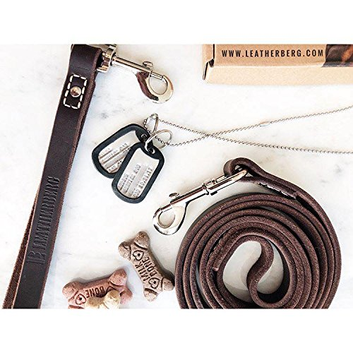 LEATHERBERG Leather Dog Training Leash - Brown 6 Foot x 3/4 Dog Walking Leash Best for Medium Large Dogs, Latigo Leather Dog Lead & Puppy Trainer Leash