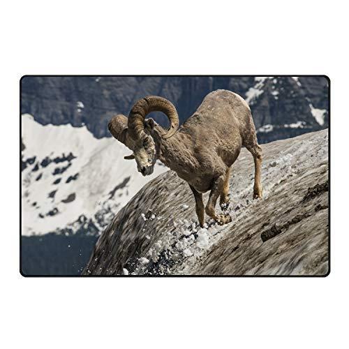 stahhn Door Rug Longhorn Sheep Non-Slip Soft Living Dining Room Rug for Front Door Entrance Outside Doormat 31x20 in ()