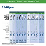 Culligan WH-HD200-C Whole House Heavy Duty Water