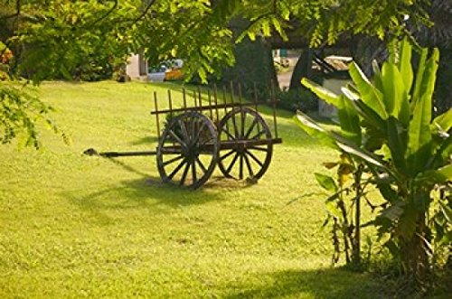 (Domaine de Severin Rum Distillery and Sugar Cane Cart Guadaloupe Caribbean Poster Print by Walter Bibikow (26 x 17))