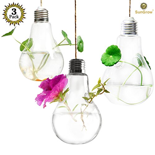 Glass Greenhouse Kit - 3 Hanging Light Bulb Plant Pot With Strings - Planter Terrarium for Home Refurbishment - Stylish Decor to Purify air - Effortless setup - Ecological miniature garden - Perfect for small house plants