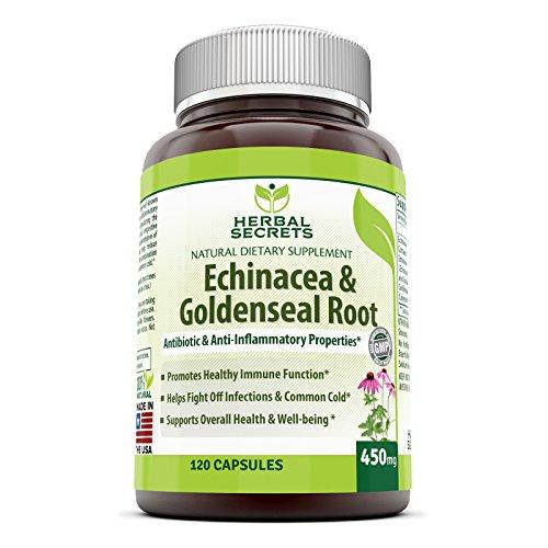 Herbes Secrets Echinacea & hydraste racine - 450 Mg 250 Caps avec Echinacea Purpurea, hydraste, bardane racine & poivre de Cayenne - prend en charge la fonction immunitaire en bonne santé et le bien-être global