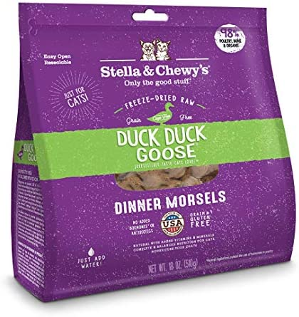 Save 20% on Stella and Chewy's Premium Raw Pet Food